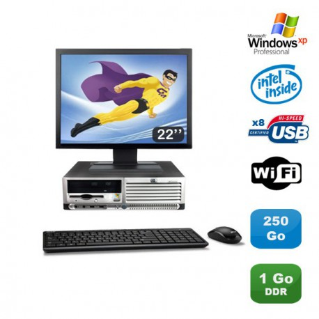 "Lot PC HP Compaq DC7100 SFF Pentium 4 HT 2.8Ghz 1Go DDR 250Go Xp Pro + Ecran 22"""