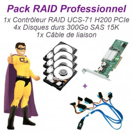 Lot 4 disques 300Go SAS 15K + Carte PERC H200 UCS-71 PCIe Raid Controller +Câble