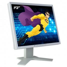 """Ecran PC Pro 19"""" EIZO FlexScan S1901 0FTB0007 LCD TFT TN VGA DVI 1280x1024 5:4"""