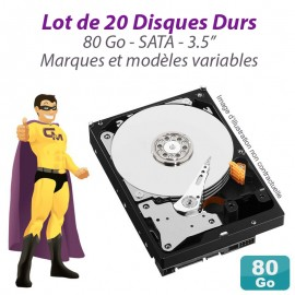 "Lot de 20 Disques durs 3.5"" 80Go SATA Western Digital Hitachi Samsung Seagate"