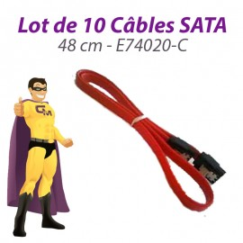 Lot 10 Câbles SATA E74020-C C95764-001 10011179-001 REV A 48 cm Rouge