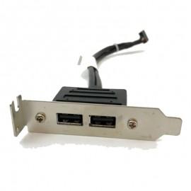 Câble Panel I/O 2 Ports USB IBM Lenovo FRU 42Y8006 22cm Low Profile M58 M82