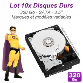 "Lot de 10 Disques durs 3.5"" 320Go SATA Western Digital Hitachi Samsung Seagate"