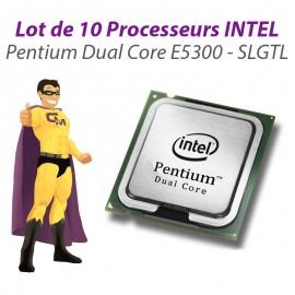 Lot x10 Processeurs CPU Intel Pentium Dual Core E5300 2.6Ghz 800Mhz LGA775 SLGTL
