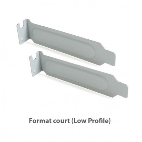 Lot 2x Caches PCI Cover Court Low profile Métalliques Boîtier PC Case - Sans Vis