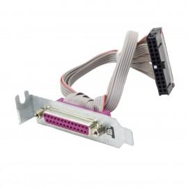 Câble Parallèle HP 6200 6300 8000 8100 8200 8300 SFF 462537-002 LPT DB-25F