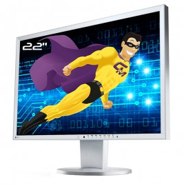 "Ecran PC 22"" EIZO FlexScan EV2216W 0FTD1952 DisplayPort VGA DVI USB Wide 16:10"