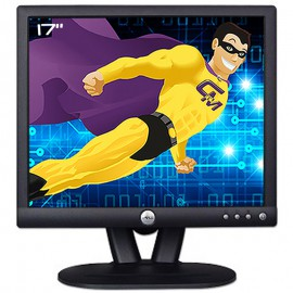 """Ecran Plat PC Pro 17"""" DELL E173FPc 0Y4417 Y4417 TFT VGA 5:4 1280x1024 VESA 75Hz"""