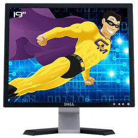 """Ecran PC Pro 19"""" DELL E197FPf 0FC998 0XH533 0HM070 TFT VGA 1280x1024 4:3 VESA"""