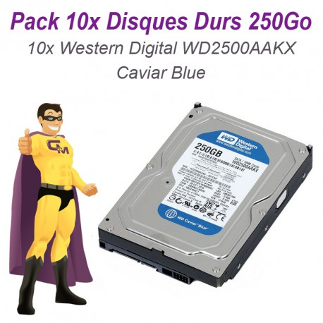 Lot 10 Disques durs 3.5 250Go SATA Western Digital Caviar Blue WD2500AAKX 7200T