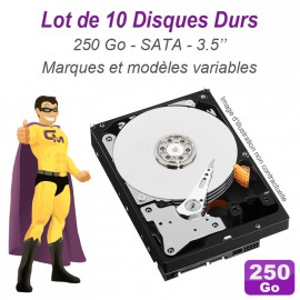 "Lot de 10 Disques durs 3.5"" 250Go SATA Western Digital Hitachi Samsung Seagate"